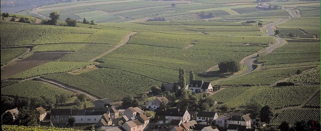 Bué Sancerre Loire-vin-deux-mondes