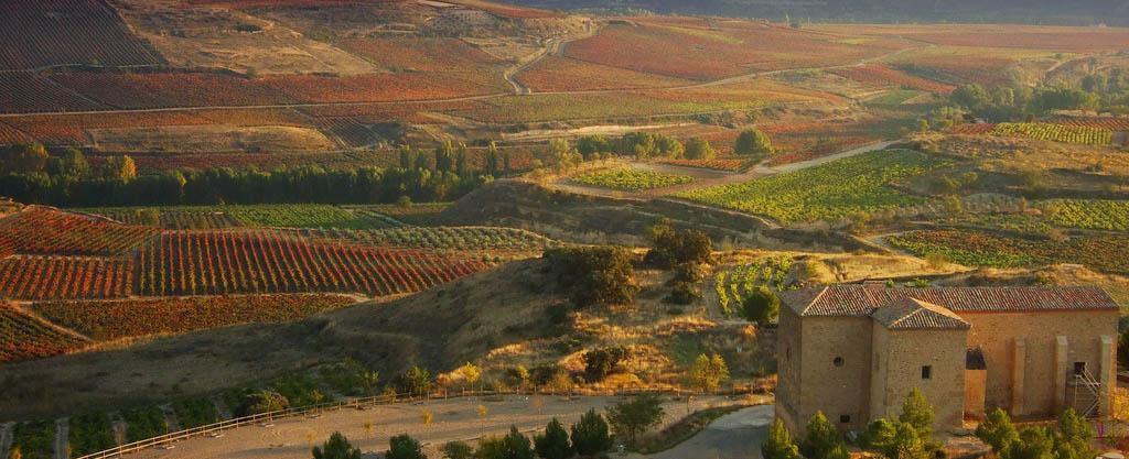 rioja-vineyard-vin-deux-mondes